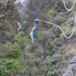 picture$queenstown_bungy
